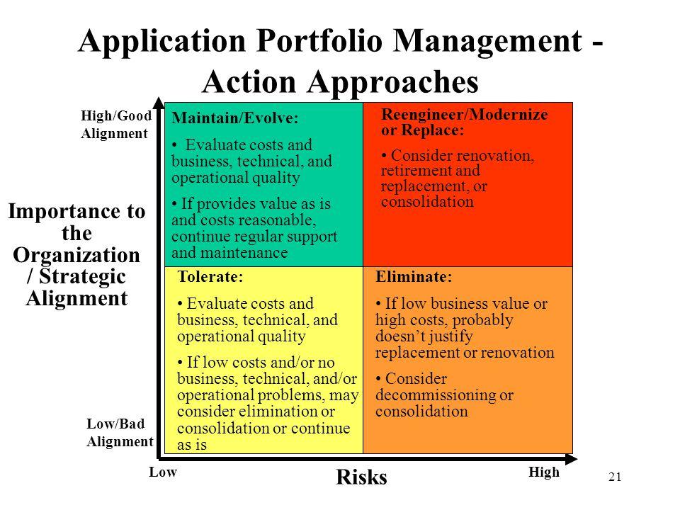 Application Portfolio Management - Action Approaches