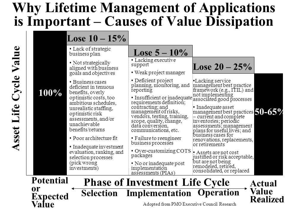 Why Lifetime Management of Applications is Important – Causes of Value Dissipation