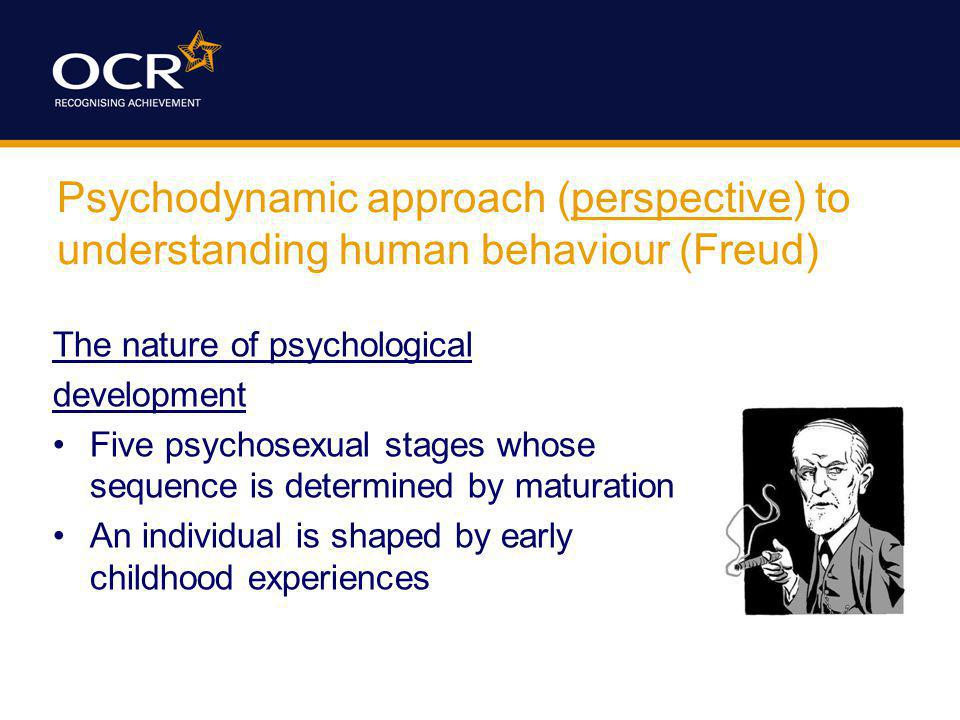 Psychodynamic approach (perspective) to understanding human behaviour (Freud)