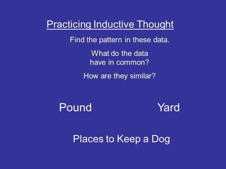 Pound Yard Practicing Inductive Thought Places to Keep a Dog
