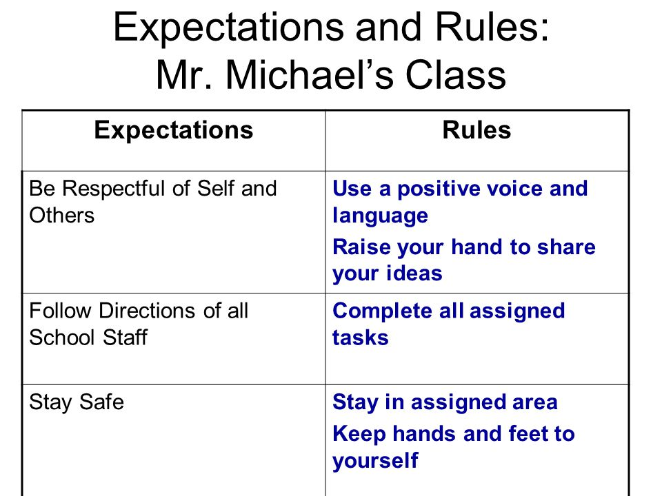 Expectations and Rules: Mr. Michael's Class