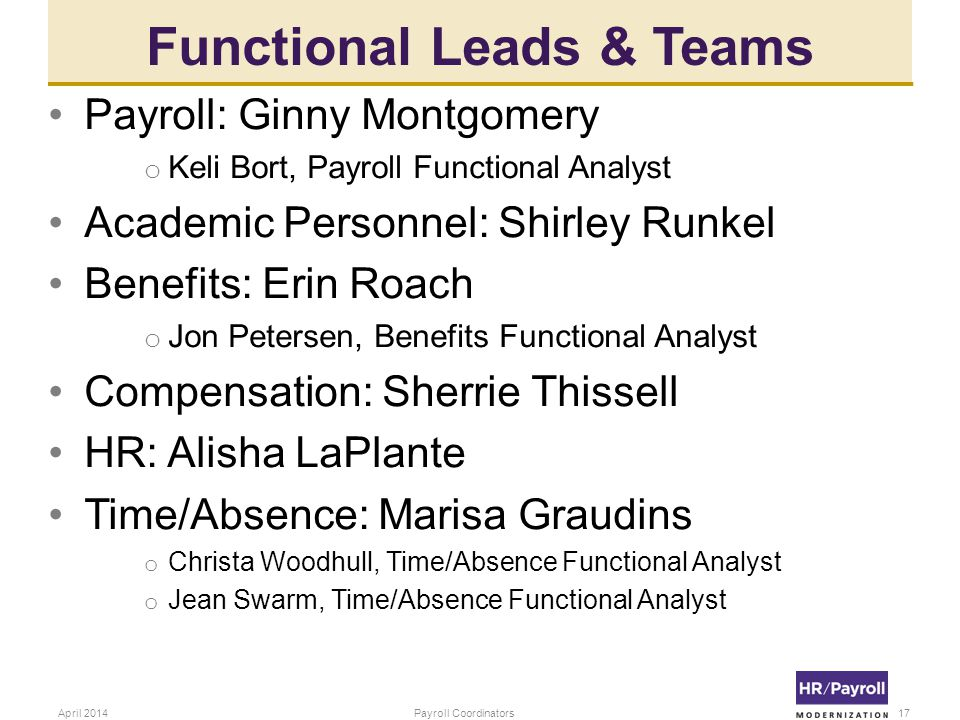Functional Leads & Teams