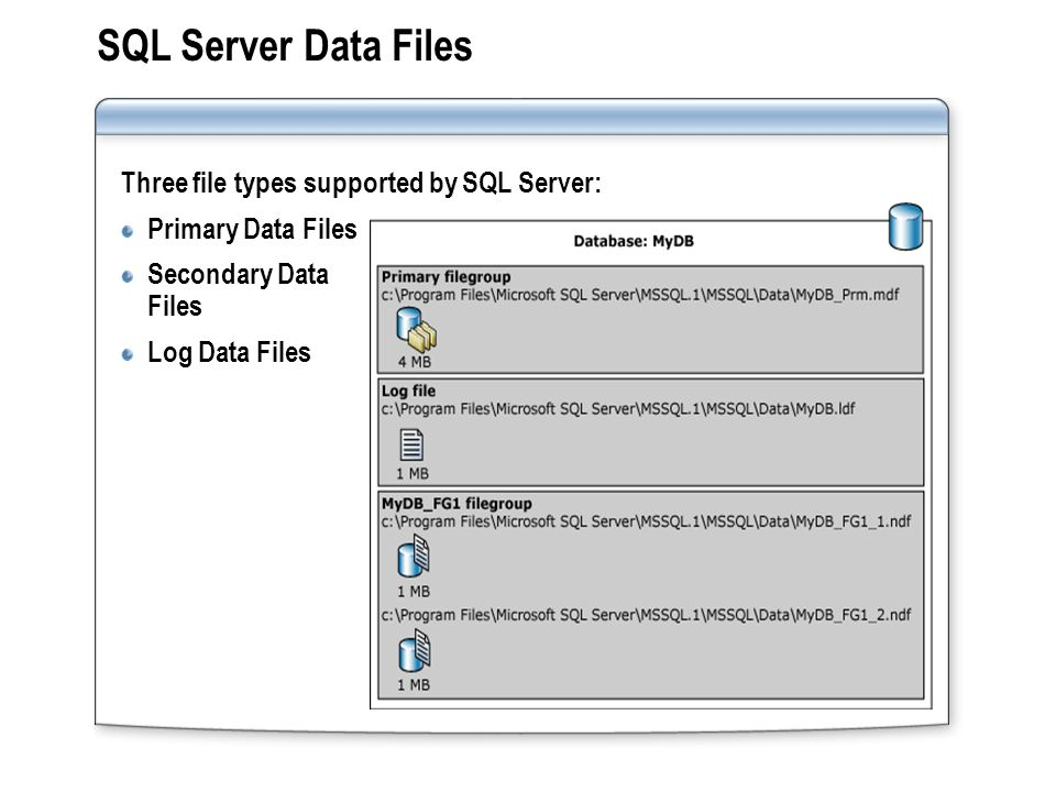 SQL Server Data Files Three file types supported by SQL Server: