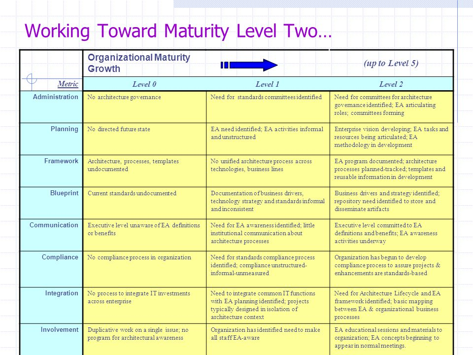 Working Toward Maturity Level Two…