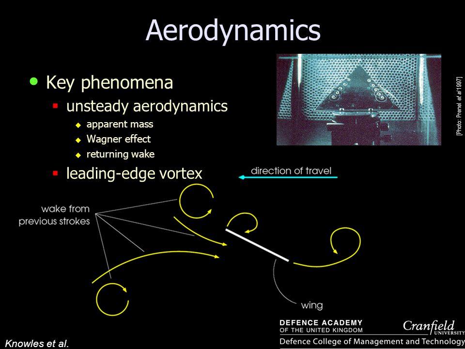 Aerodynamics Key phenomena unsteady aerodynamics leading-edge vortex