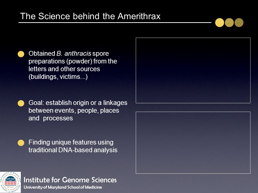 The Science behind the Amerithrax