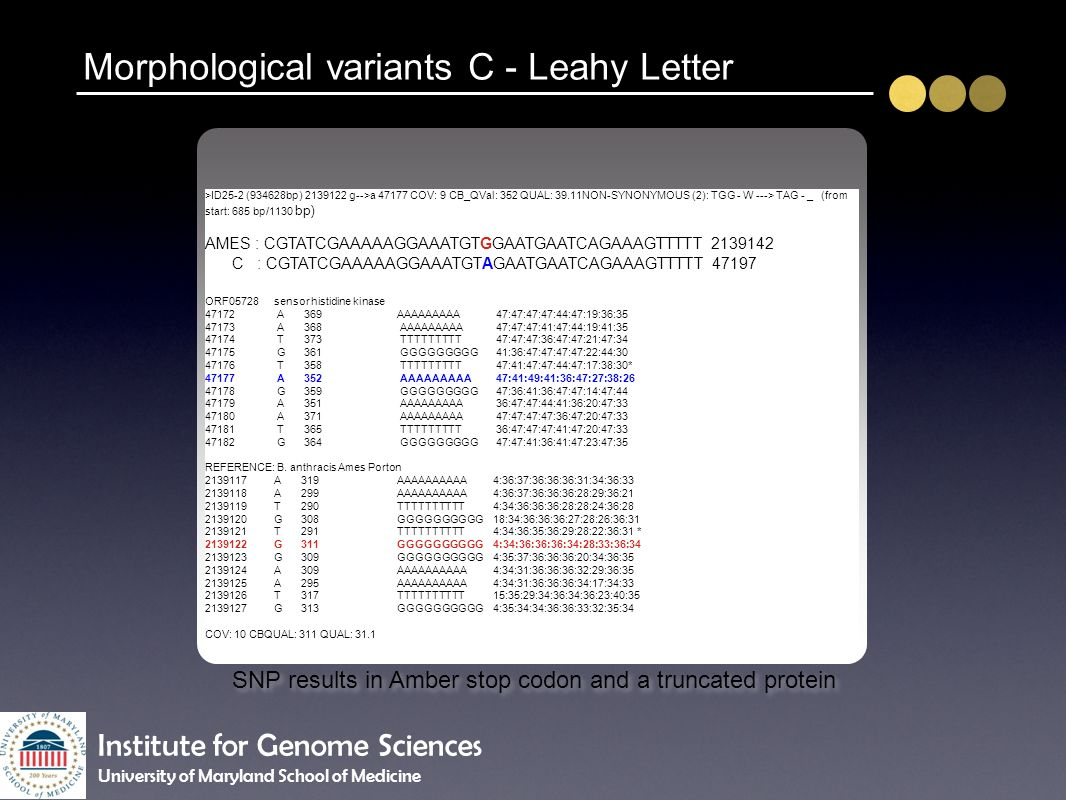 Morphological variants C - Leahy Letter