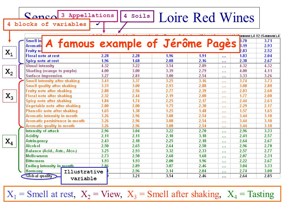 Sensory analysis of 21 Loire Red Wines