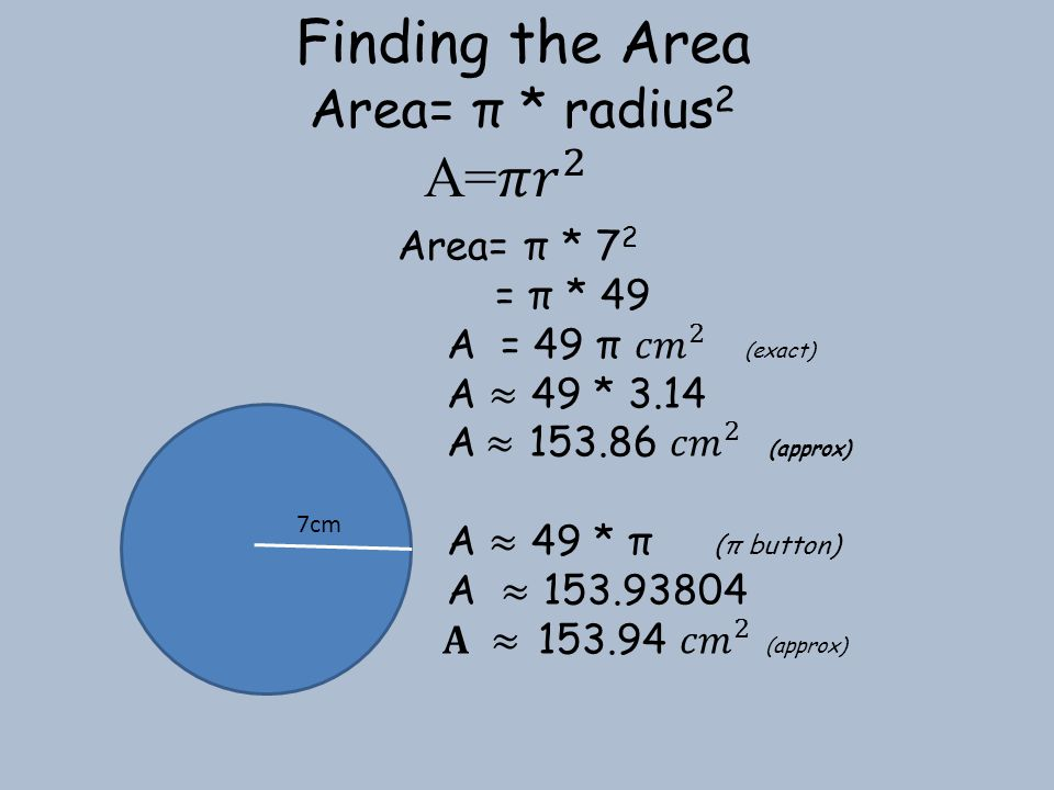 Finding the Area A=𝜋 𝑟 2 Area= π * radius2 Area= π * 72 = π * 49