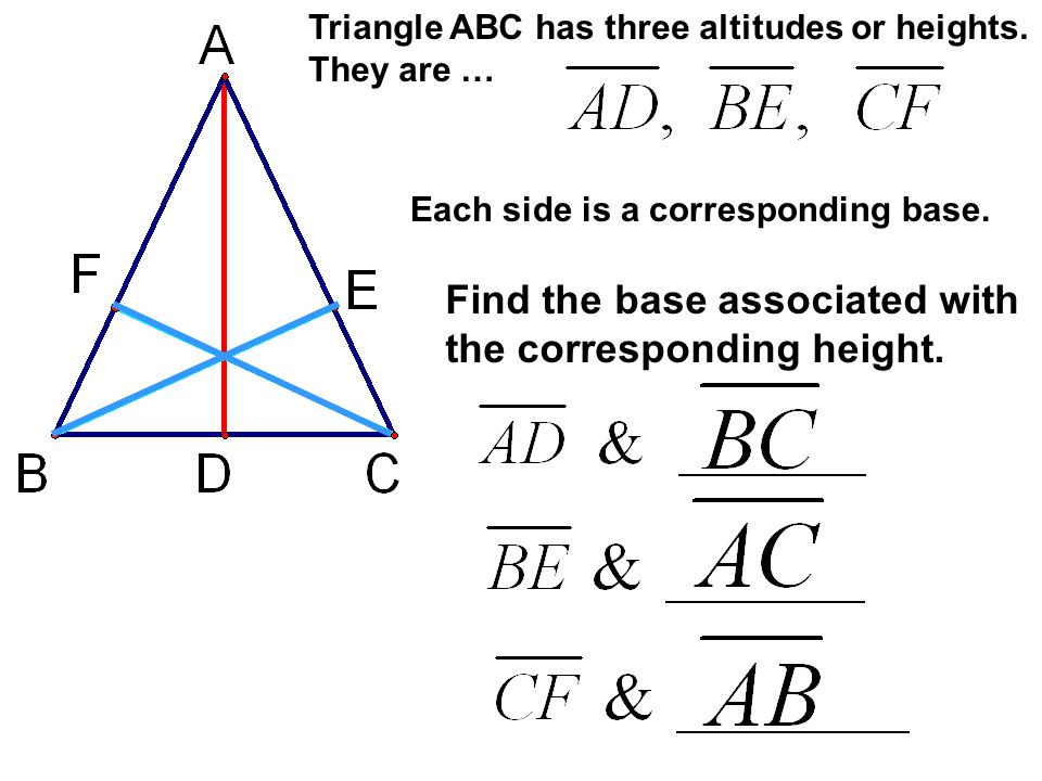 Find the base associated with the corresponding height.
