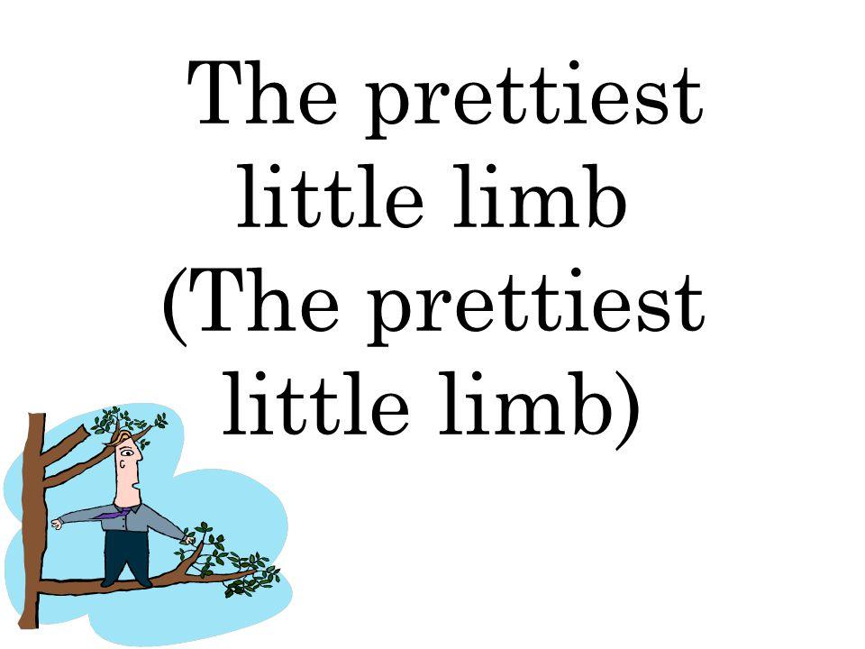 The prettiest little limb (The prettiest little limb)