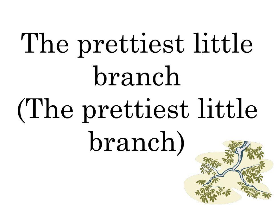 The prettiest little branch (The prettiest little branch)