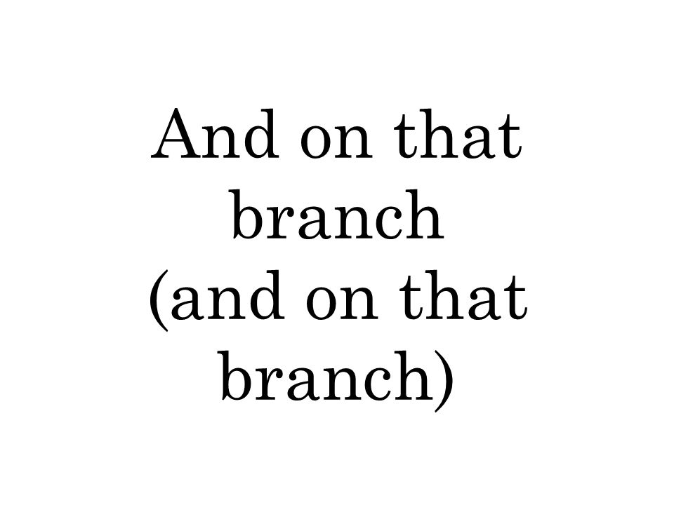 And on that branch (and on that branch)