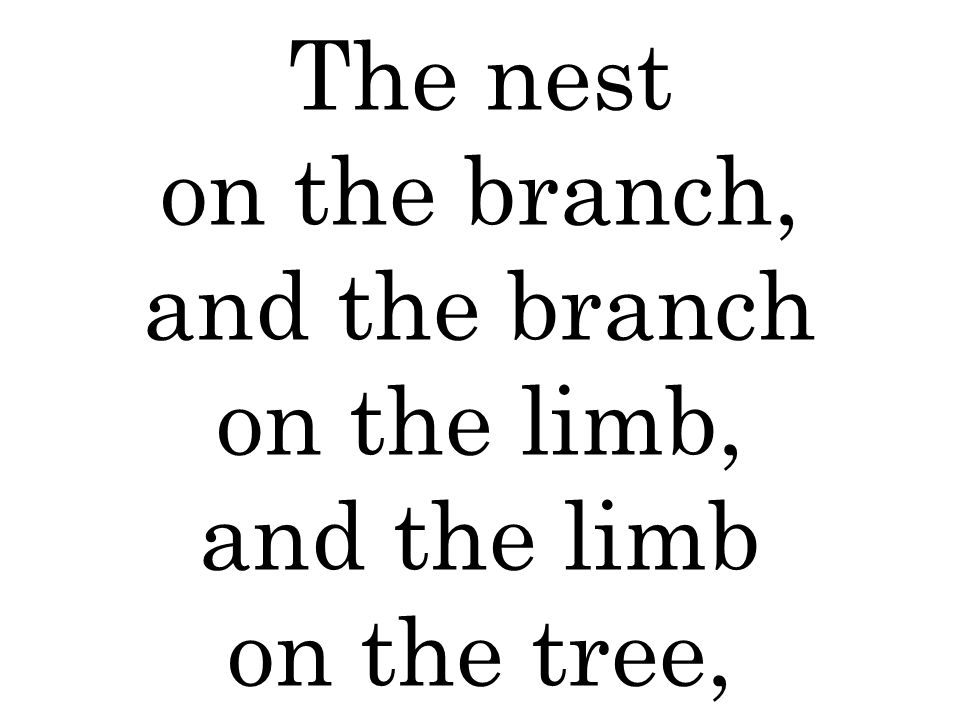 The nest on the branch, and the branch on the limb, and the limb on the tree,