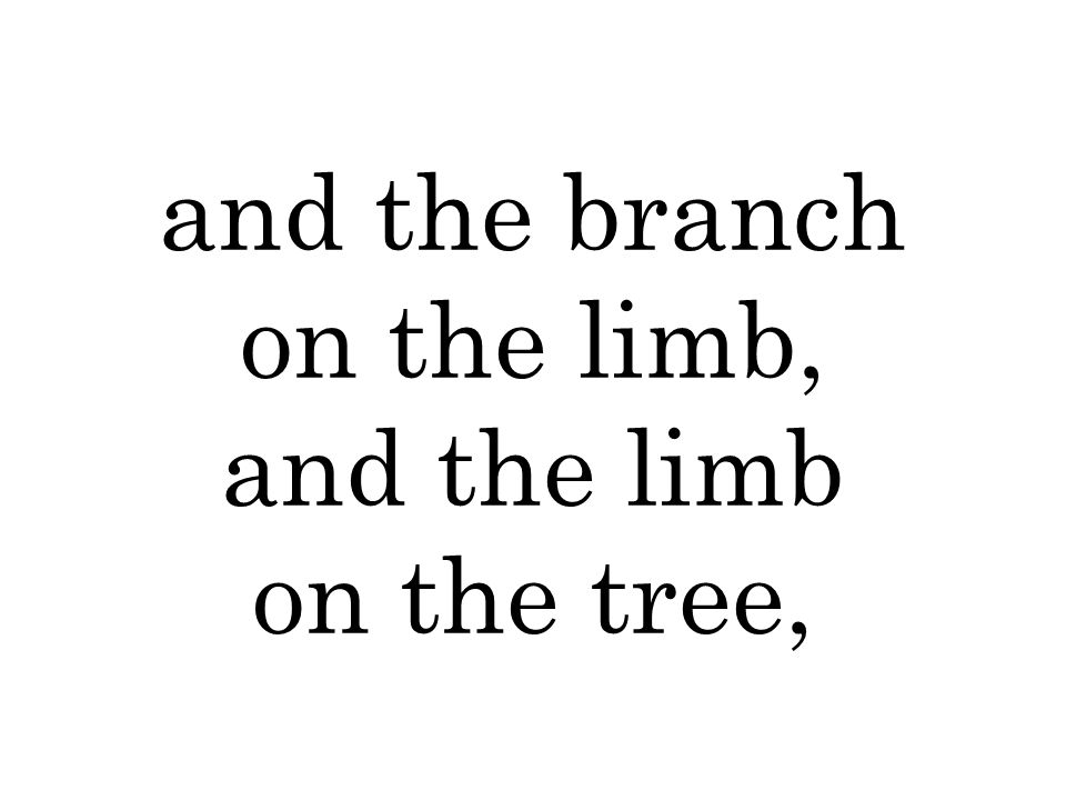 and the branch on the limb, and the limb on the tree,