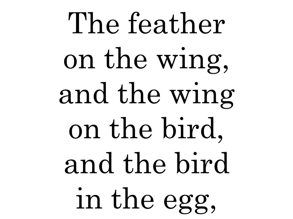 The feather on the wing, and the wing on the bird, and the bird in the egg,