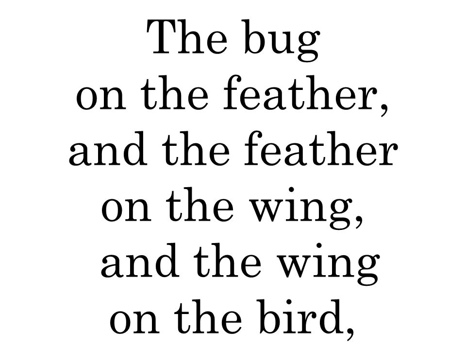 The bug on the feather, and the feather on the wing, and the wing on the bird,