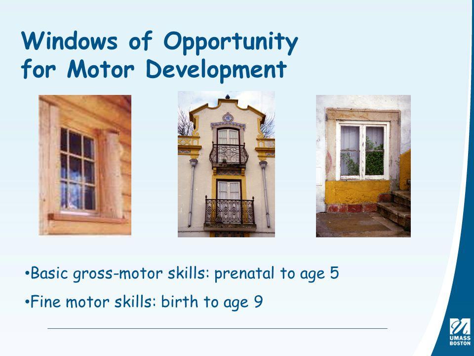 Windows of Opportunity for Motor Development