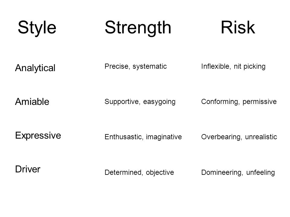 Style Strength Risk Analytical Amiable Expressive Driver