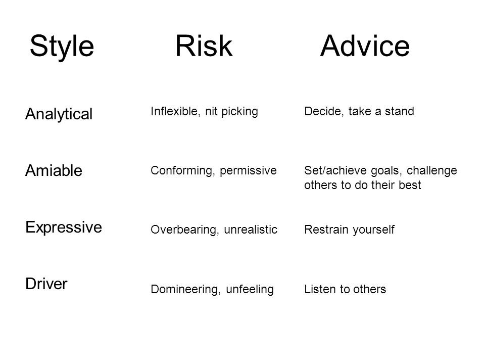 Style Risk Advice Analytical Amiable Expressive Driver