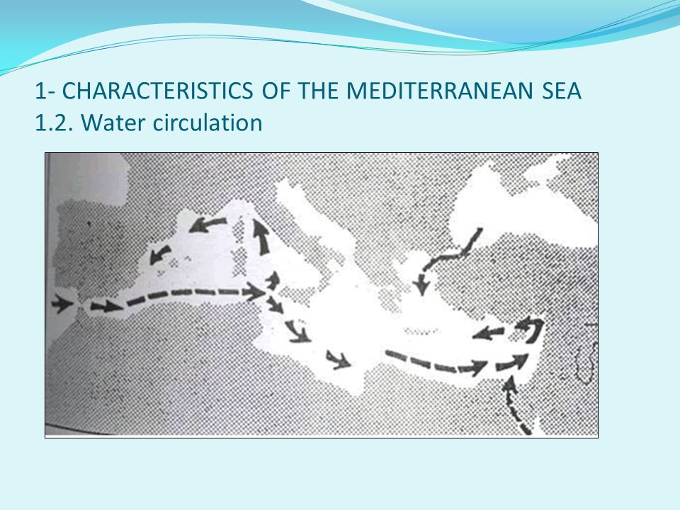 1- CHARACTERISTICS OF THE MEDITERRANEAN SEA 1.2. Water circulation
