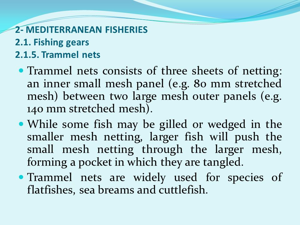 2- MEDITERRANEAN FISHERIES 2.1. Fishing gears 2.1.5. Trammel nets