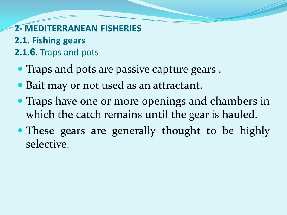 2- MEDITERRANEAN FISHERIES 2.1. Fishing gears 2.1.6. Traps and pots