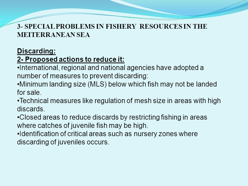 3- SPECIAL PROBLEMS IN FISHERY RESOURCES IN THE MEITERRANEAN SEA
