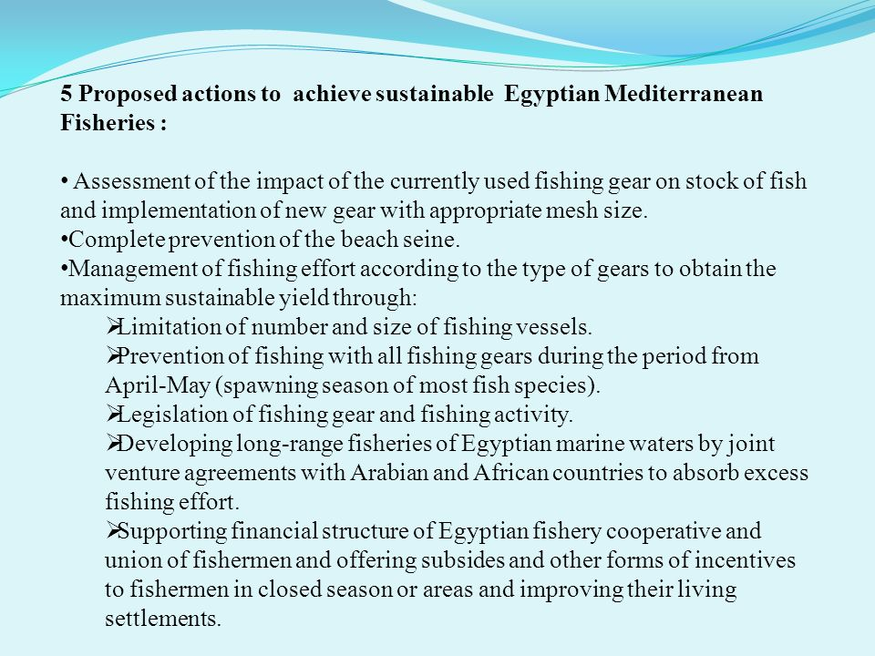 5 Proposed actions to achieve sustainable Egyptian Mediterranean Fisheries :