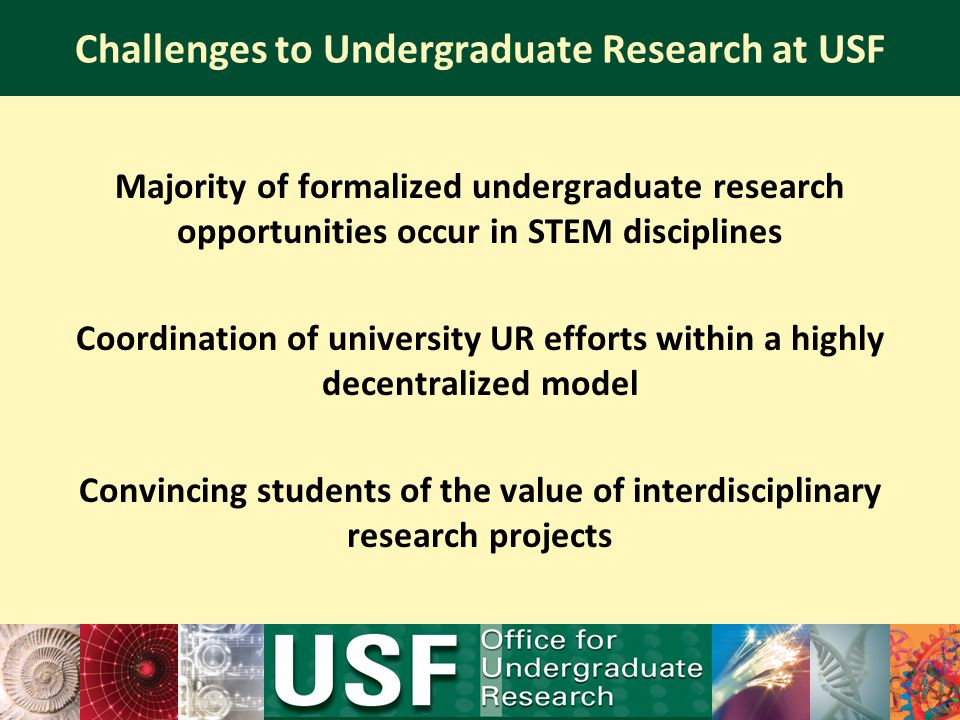 Challenges to Undergraduate Research at USF