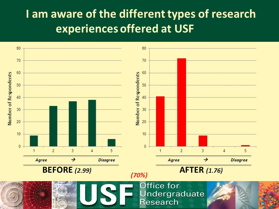 I am aware of the different types of research experiences offered at USF