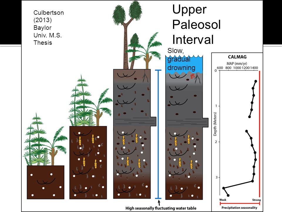 Upper Paleosol Interval