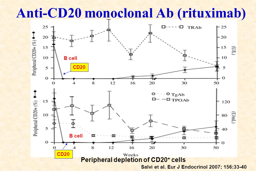 Anti-CD20 monoclonal Ab (rituximab)