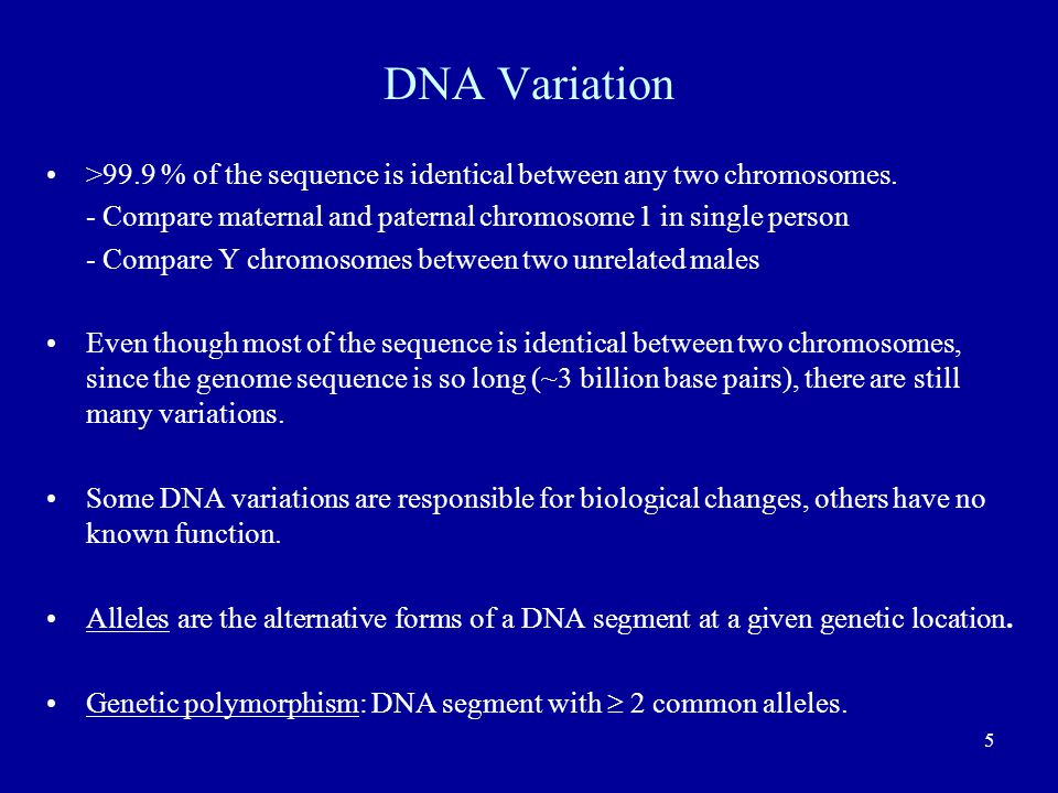 DNA Variation >99.9 % of the sequence is identical between any two chromosomes. - Compare maternal and paternal chromosome 1 in single person.