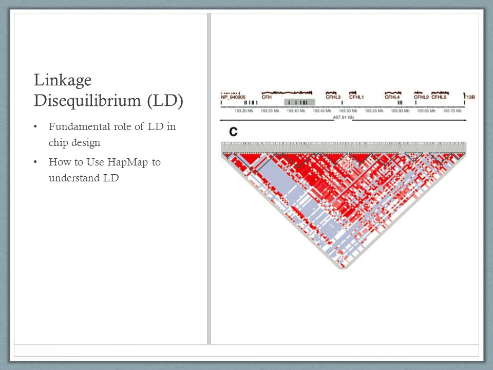 Linkage Disequilibrium (LD)