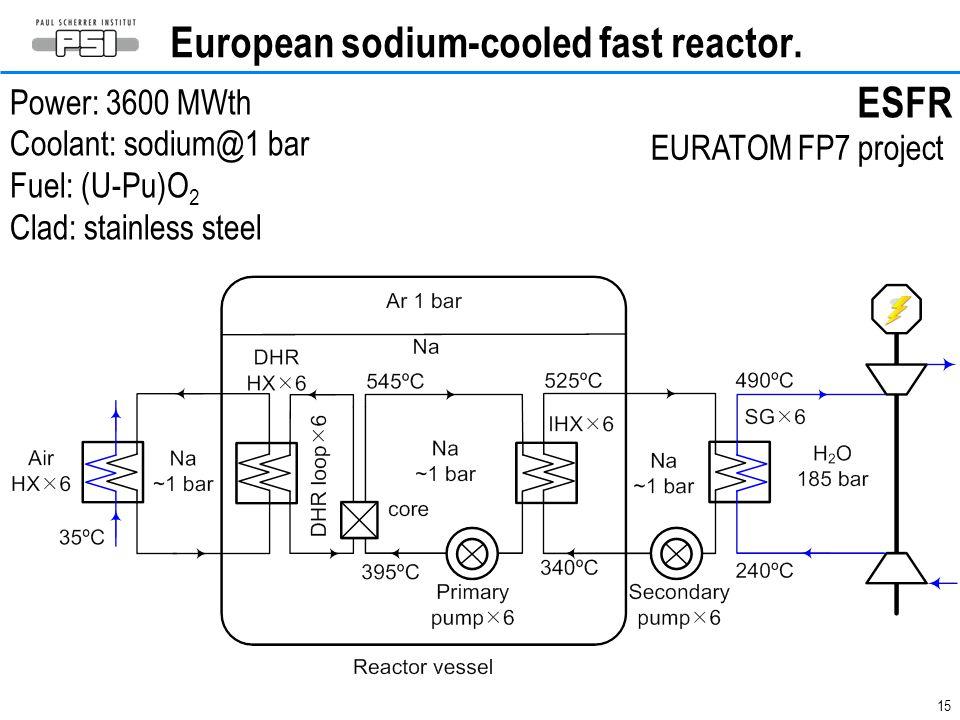 European sodium-cooled fast reactor.