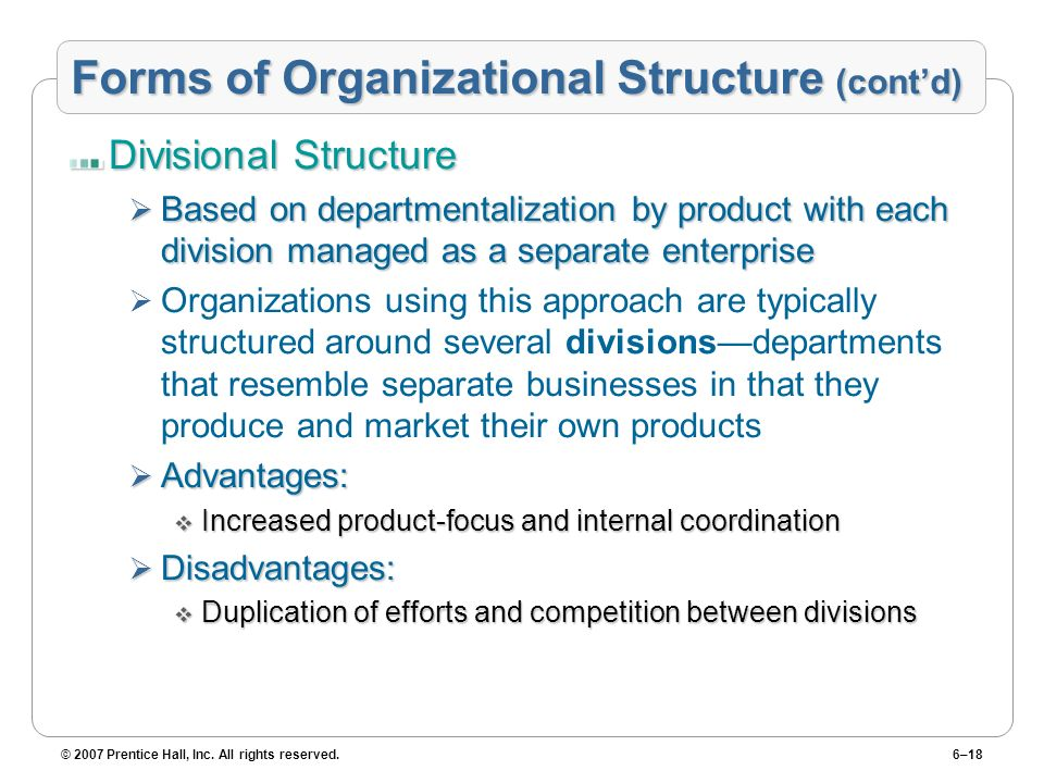 Forms of Organizational Structure (cont'd)