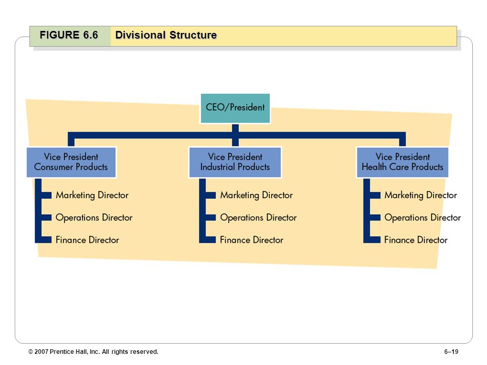 FIGURE 6.6 Divisional Structure