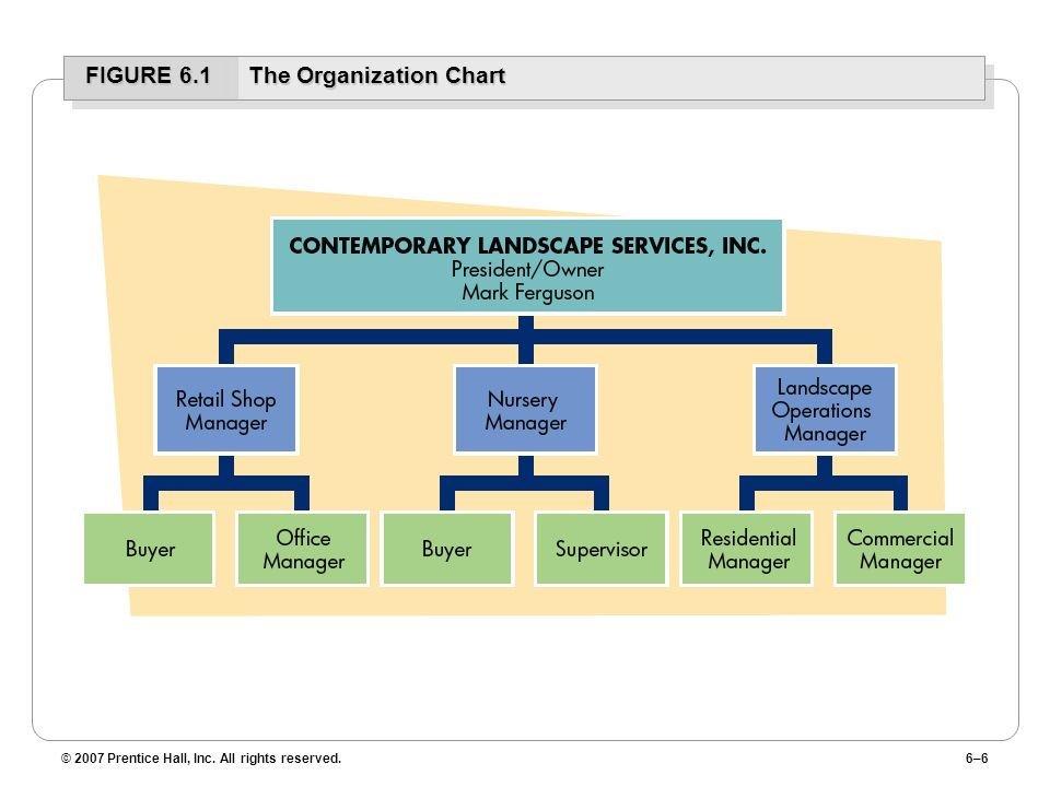 FIGURE 6.1 The Organization Chart