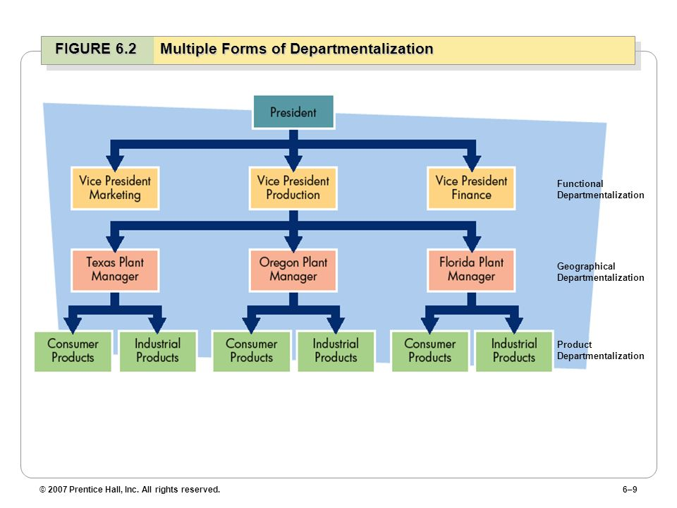 FIGURE 6.2 Multiple Forms of Departmentalization
