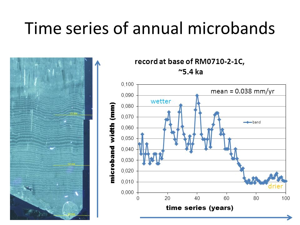 Time series of annual microbands