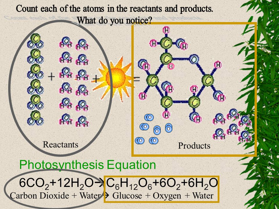 Count each of the atoms in the reactants and products.