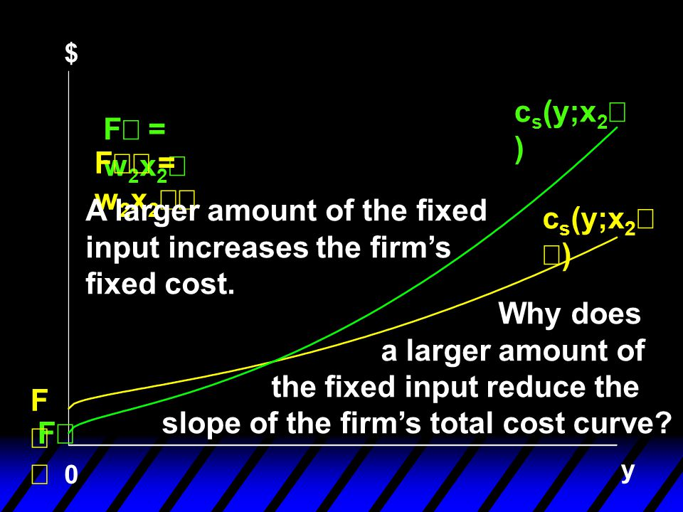 A larger amount of the fixed input increases the firm's fixed cost.