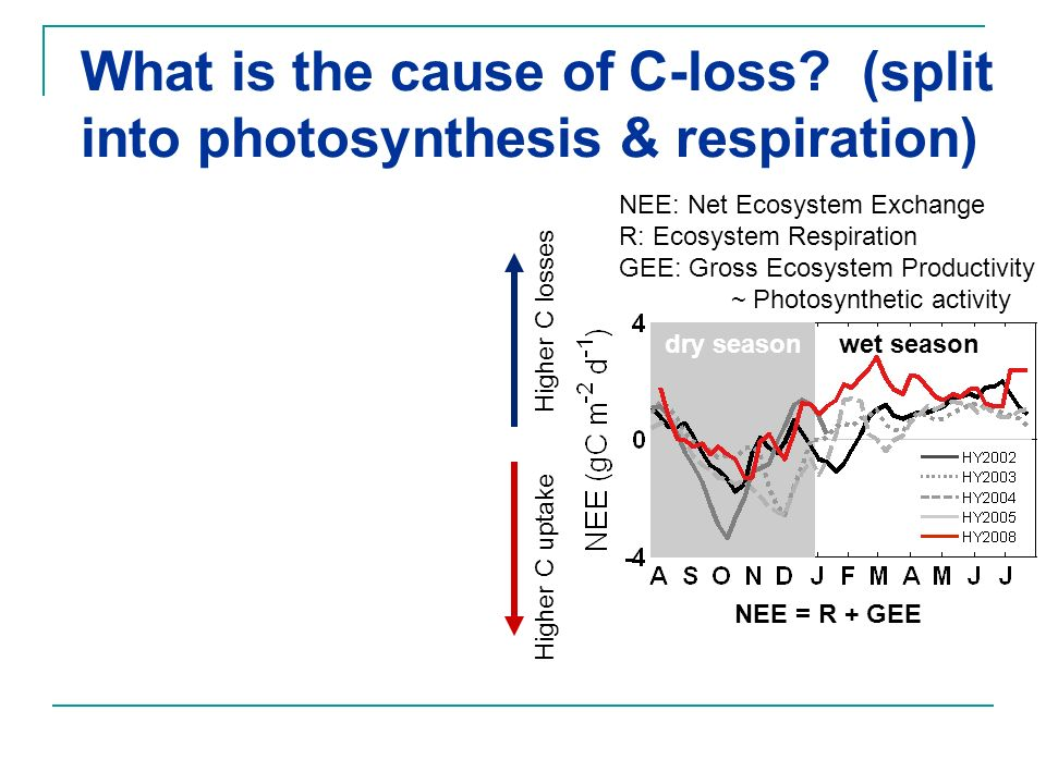 What is the cause of C-loss (split into photosynthesis & respiration)