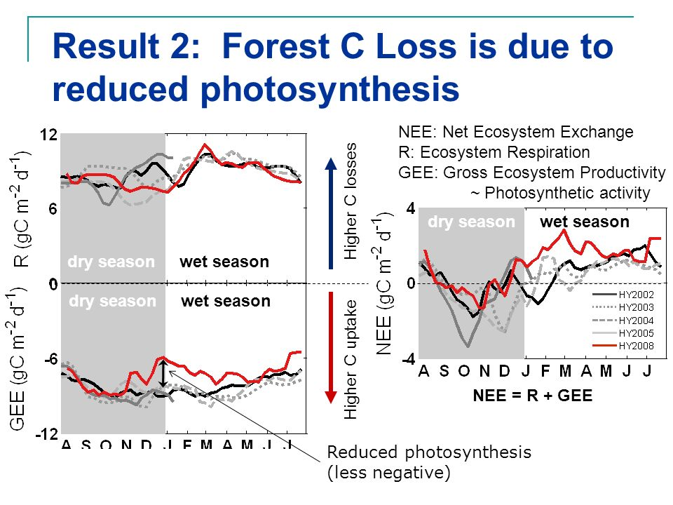 Result 2: Forest C Loss is due to reduced photosynthesis