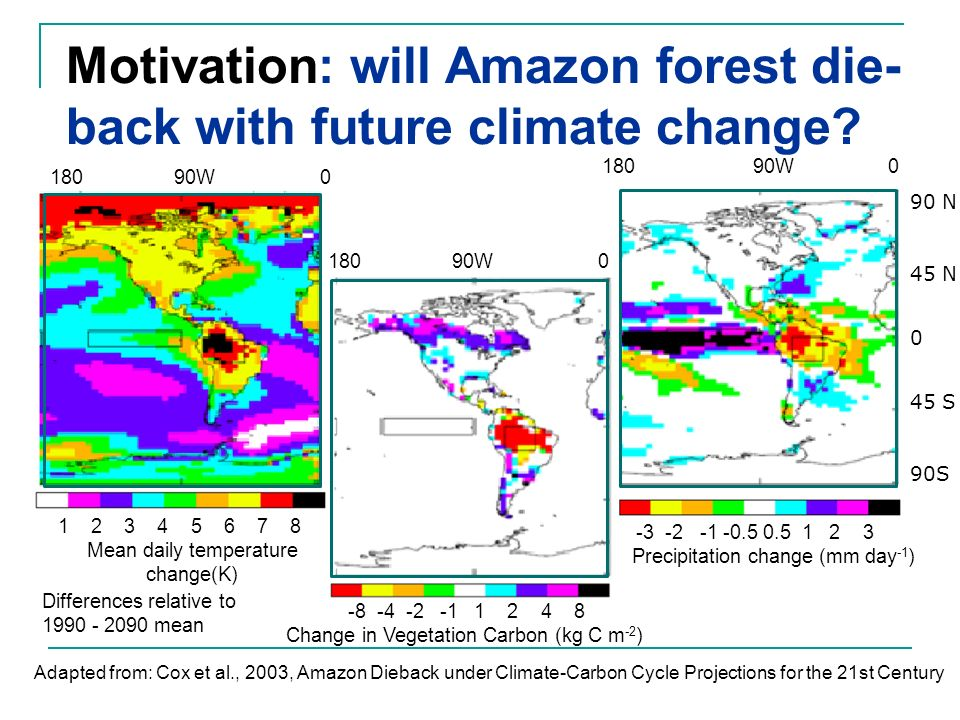 Motivation: will Amazon forest die-back with future climate change