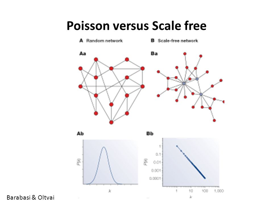 Poisson versus Scale free