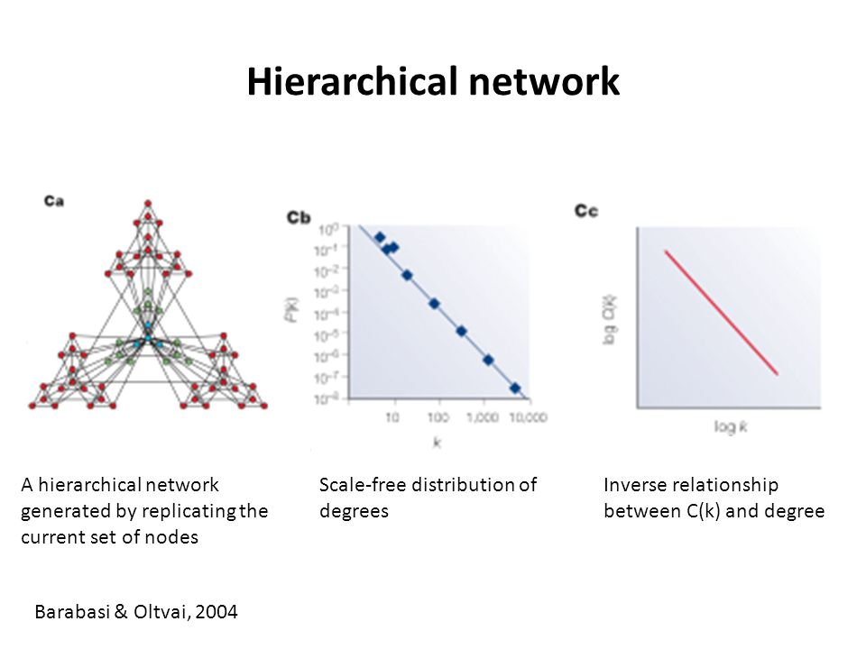 Hierarchical network A hierarchical network generated by replicating the current set of nodes. Scale-free distribution of degrees.