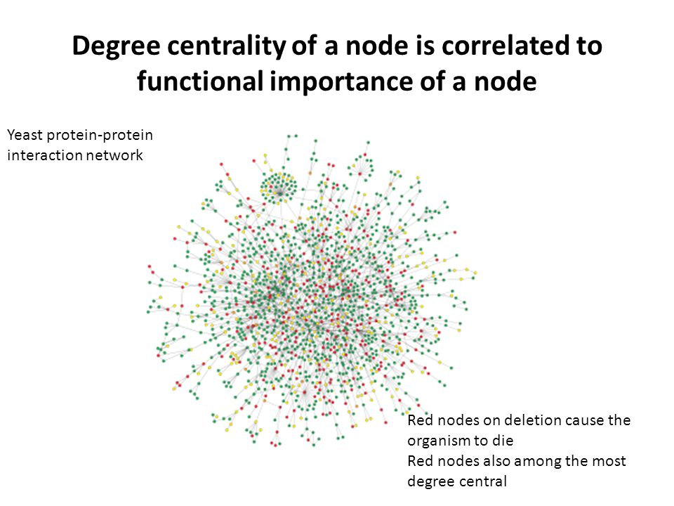 Degree centrality of a node is correlated to functional importance of a node