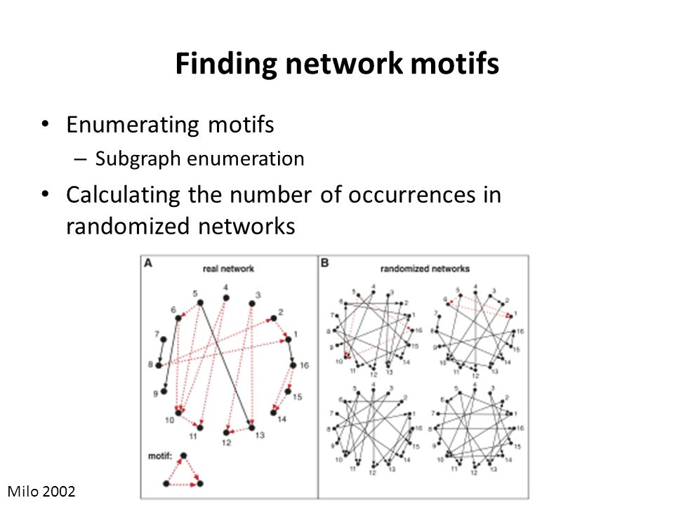 Finding network motifs